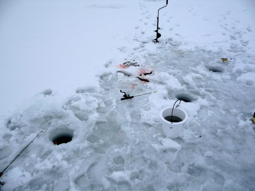 Wildlife in the wild with greg wagner page 3 for Ice fishing nebraska